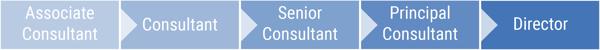 karrierelevel_consultant